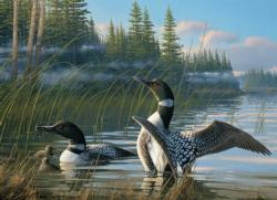 Common Loons Lakes / Rivers / Streams Jigsaw Puzzle