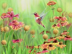 Rufous Hummingbird Flowers Jigsaw Puzzle