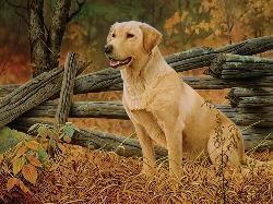 Man's Best Friend Fall Jigsaw Puzzle