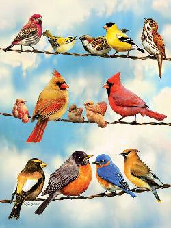 Birds on a Wire Outdoors Jigsaw Puzzle