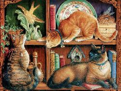 Cat Shelf Cats Jigsaw Puzzle