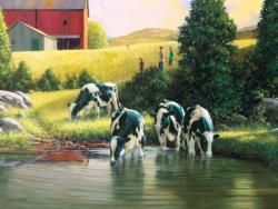 Holsteins Farm Jigsaw Puzzle
