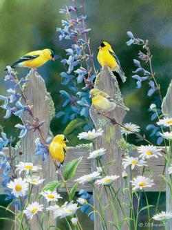 Goldfinch Quartet Flowers Jigsaw Puzzle