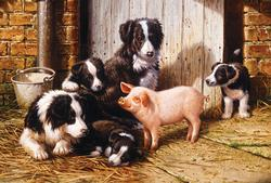 Piggy in the Middle Farm Animals Jigsaw Puzzle