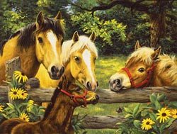 Friends, Neighbors & Sunflowers Horses Jigsaw Puzzle