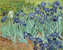 Iris Impressionism Jigsaw Puzzle