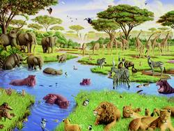 Watering Hole Other Animals Family Puzzle