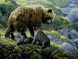 Grizzly and Cubs Bears Family Puzzle