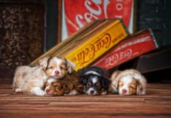 We Drank It All Dogs Jigsaw Puzzle