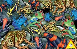 Big Frogs Collage Jigsaw Puzzle