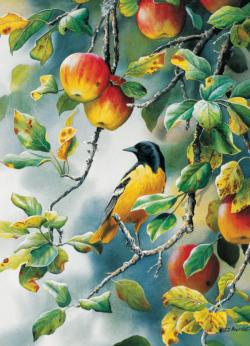Northern Oriole Food and Drink Jigsaw Puzzle