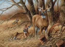 Rustic Retreat Deer Jigsaw Puzzle