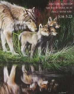 Reflections (Inspirations) Wolves Jigsaw Puzzle
