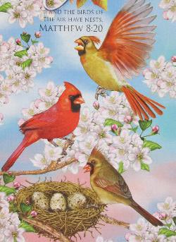 Cardinals and Cherry Blossoms (Inspirations) Birds Jigsaw Puzzle