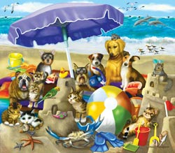 Beach Buddies Summer Children's Puzzles
