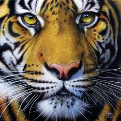 Golden Tiger Face Tigers Jigsaw Puzzle