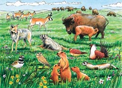 Life in the Prairie Wildlife Tray Puzzle