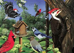 Around The Birdfeeder Birds Tray Puzzle