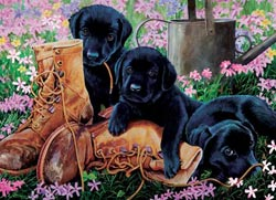 Black Lab Puppies Dogs Tray Puzzle