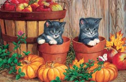 Little Pumpkins Cats Tray Puzzle