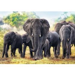 African Elephants Elephants Jigsaw Puzzle