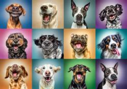 Funny Dog Portrait / Chiens amusants Dogs Jigsaw Puzzle