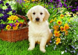 Labrador Puppy in the Garden Baby Animals Jigsaw Puzzle