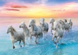Galloping White Horses Horses