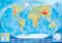 Large Map of the World Maps / Geography Jigsaw Puzzle