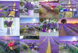 Lavender France L Collage Double Sided Puzzle