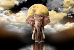 Elephant Dreams L Elephants Double Sided Puzzle