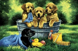 Puppy Bath Summer Children's Puzzles