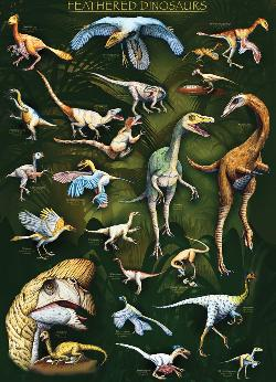 Feathered Dinosaurs Collage Jigsaw Puzzle