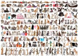 The World of Cats Pattern / Assortment Jigsaw Puzzle
