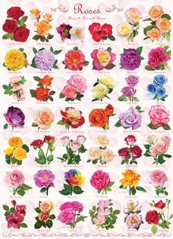 Roses Pattern / Assortment Jigsaw Puzzle
