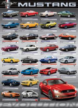 Ford Mustang Evolution Pattern / Assortment