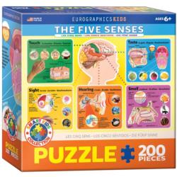 The Five Senses - Scratch and Dent Science Children's Puzzles