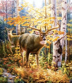 Eye to Eye Deer Jigsaw Puzzle