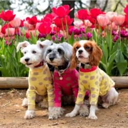 Best Friends Flowers Jigsaw Puzzle