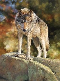 Stare Down Wildlife Jigsaw Puzzle