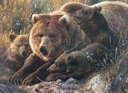 Grizzly Family Bears Family Puzzle