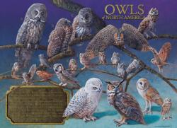 Owls of North America Owl Jigsaw Puzzle