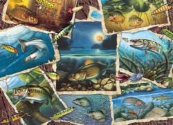 Fish Pics Collage Jigsaw Puzzle