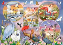 Waterbird Magic Birds Jigsaw Puzzle