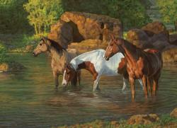 Horse Pond Lakes / Rivers / Streams Jigsaw Puzzle