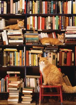 Gotham Bookstore Cats Cats Jigsaw Puzzle