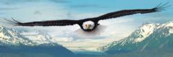 Eagle Eagles Panoramic Puzzle