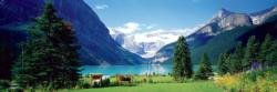 Lake Louise Canadian Rockies Mountains Jigsaw Puzzle