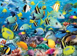 Ocean Colors Fish Jigsaw Puzzle