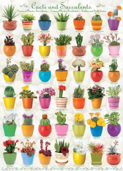 Cacti and Succulents Pattern / Assortment Jigsaw Puzzle